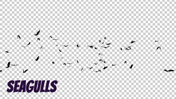 Seagulls Silhouette
