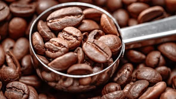 Thumbnail for Close Up Seeds Coffee