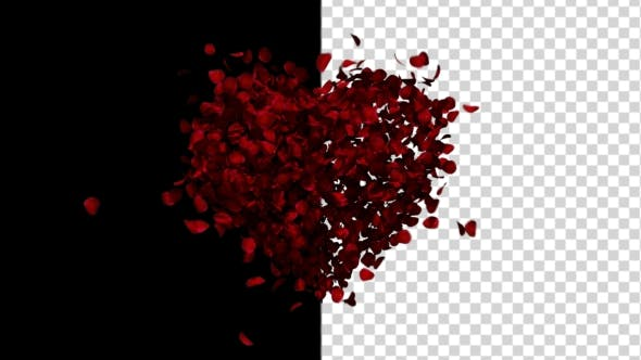 Thumbnail for Heart Animation From Rose Petals
