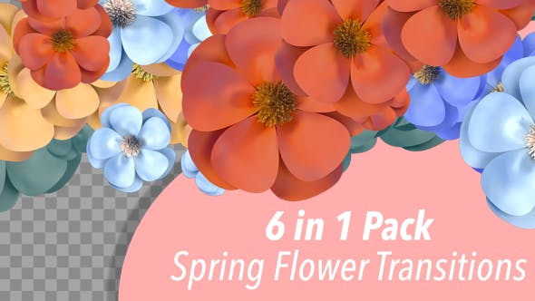 Thumbnail for Spring Flower Transitions