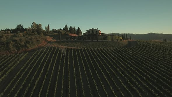 Thumbnail for Aerial Footage of Tractor Spraying Pesticide in Vineyards