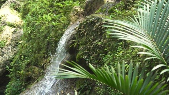 Thumbnail for Beautiful Tropical Waterfall. Philippines Cebu Island.