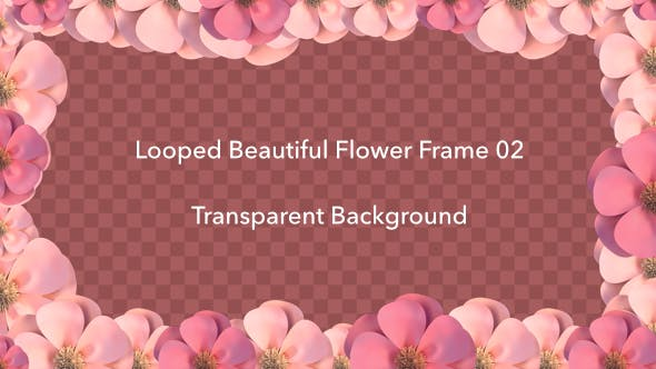 Thumbnail for Looped Beautiful Flower Frame 02