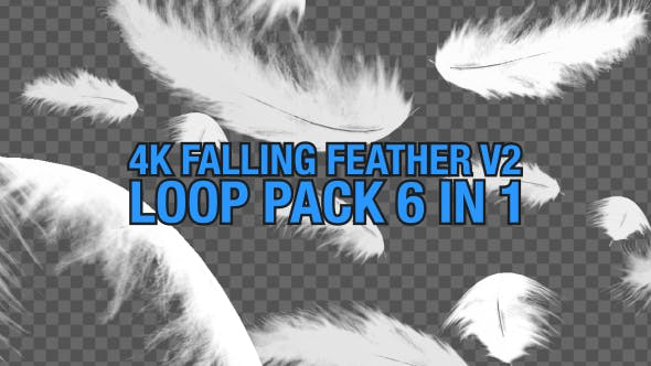 4K Falling Feather Pack V2 6 in 1