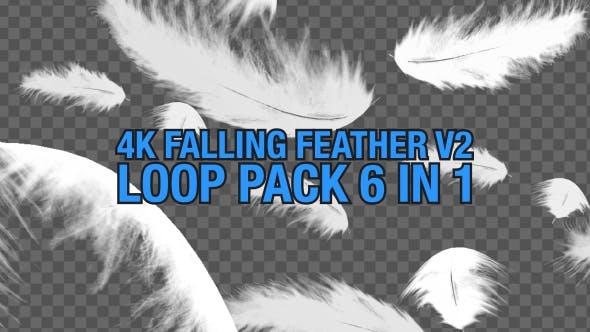 Thumbnail for 4K Fallende Feder Pack V2 6 in 1