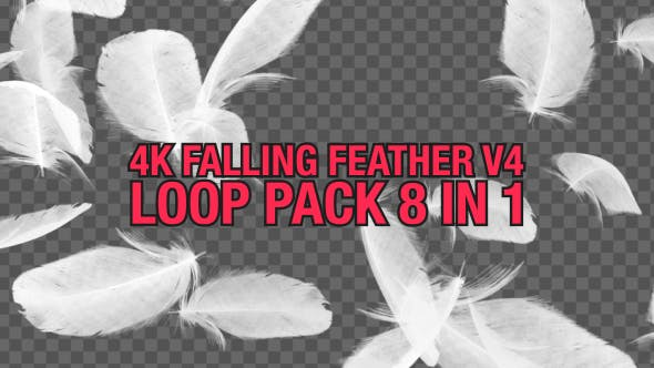 Thumbnail for 4K Falling Feather Pack V4 8 in 1