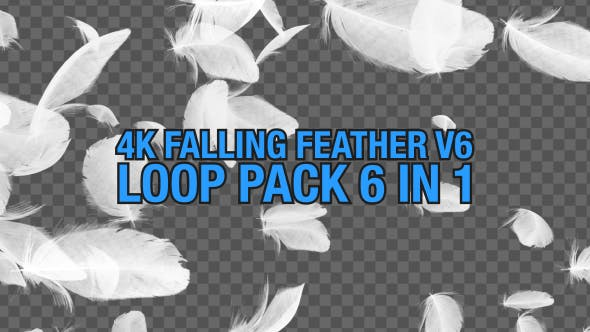 4K Falling Feather Pack V6 6 in 1