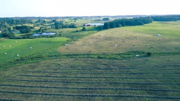 Thumbnail for Tractor Working in Fields Aerial View