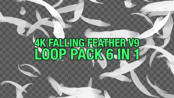 4K Falling Feather Pack V9 6 in 1