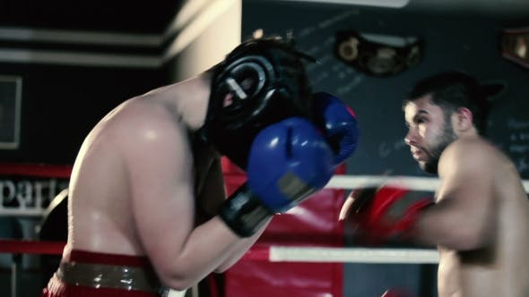 Cover Image for Men Inflict Punches in the Boxing Gloves.
