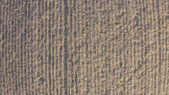 Thumbnail for Aerial Shot of Plowed Empty Field During Winter on Sunny Day - Top View