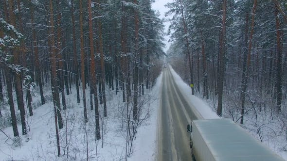 Thumbnail for The Road in the Winter Forest.