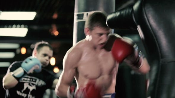 The Boxers Are Train a Series of Blows