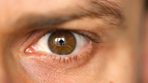 Beautiful Blinking Male Eye