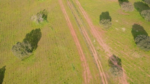 Thumbnail for Aerial View Green Rural Landscape