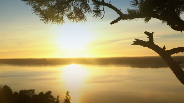 Thumbnail for Scandinavian Landscape. Lonely Pine at Sunset on a Cliff