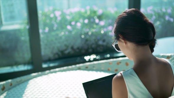 Thumbnail for Businesswoman Typing on Laptop, Back Shot