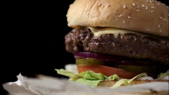 of Burger.