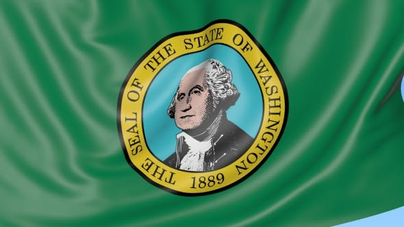 Thumbnail for Waving Flag of Washington Against Blue Sky