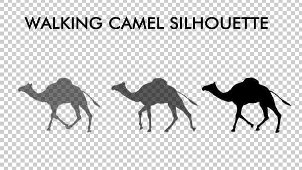 Cover Image for Walking Camel Silhouette