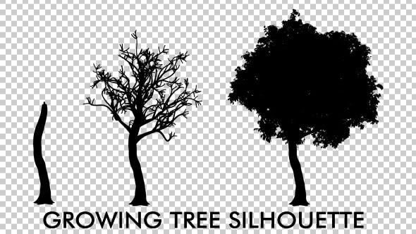Thumbnail for Growing Tree Silhouette Animation