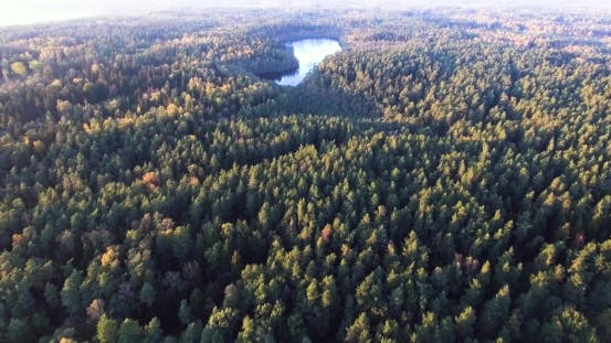 Thumbnail for Flying Above Autumn Forest and Lake