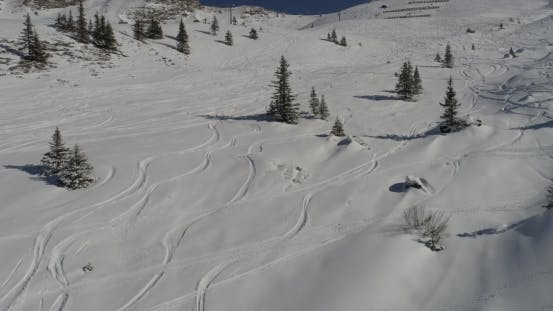Thumbnail for Tracks in the Snow of Snowboarders