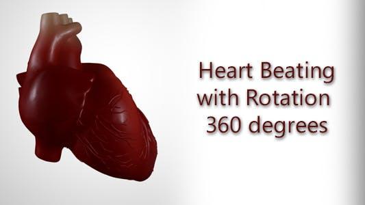 Thumbnail for Herzschlag mit Drehung um 360 Grad