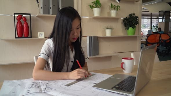 Thumbnail for Young Professional Woman Worker in Agency.