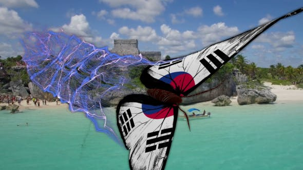 Korea South Flag Butterfly Gorgeous Particle Light Trailing Flying Transtion V2