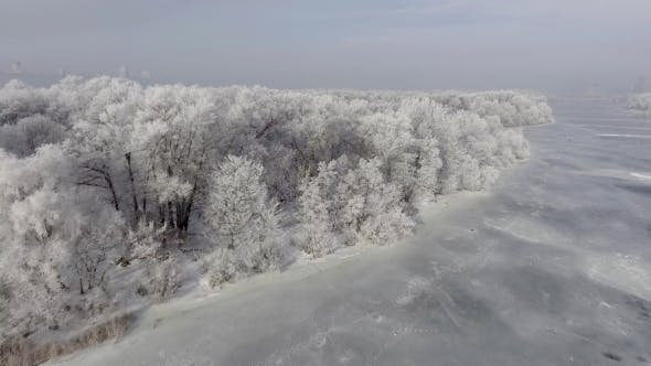 Thumbnail for Low Flying Over a Winter Forest.