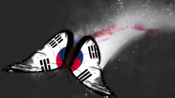 Thumbnail for Korea South Flag Butterfly Dynamic Flying Particle Tail V1