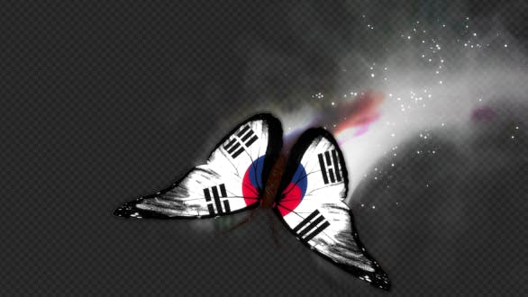 Thumbnail for Korea South Flag Butterfly Dynamic Flying Particle Tail V2