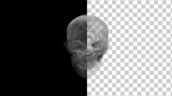 Thumbnail for Animation Head Ghost Skull Smoke