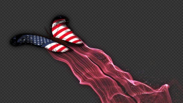 United States of America Flag Butterfly Gorgeous Particle Light Trailing Flying V2