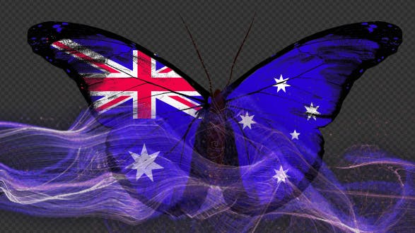 Australia Flag Butterfly Gorgeous Particle Light Trailing Flying V1
