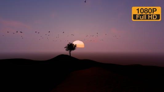 Thumbnail for Tree Birds and Time-lapse Mountain
