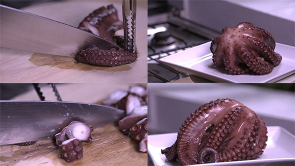 Thumbnail for Cooked and Cut Octopus