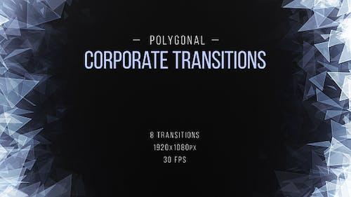 Transitions d'entreprise polygonales