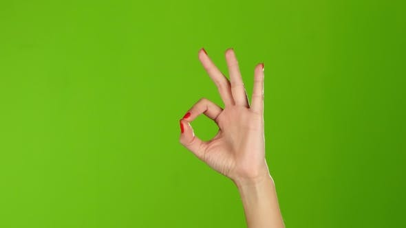 Cover Image for Sign Language. Girl Hand Shows Gesture Finger Okay, All Right