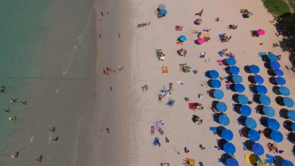 Thumbnail for Lot of Deckchairs Are on Beach Near Sea at Summer Sunny Day, Phuket, Thailand