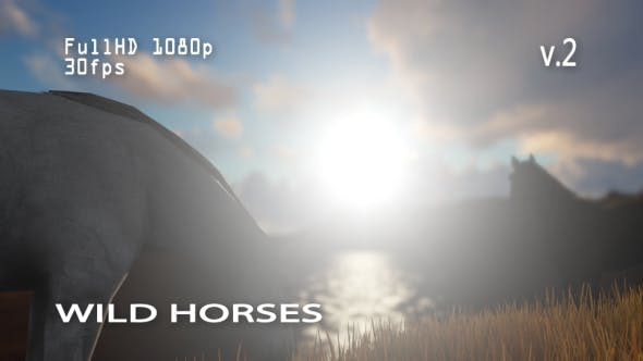 Thumbnail for Wild Horses 2