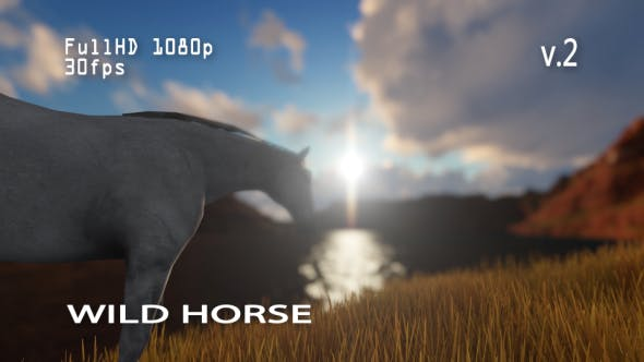 Thumbnail for Wild Horse 2