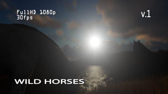 Thumbnail for Wild Horses 1