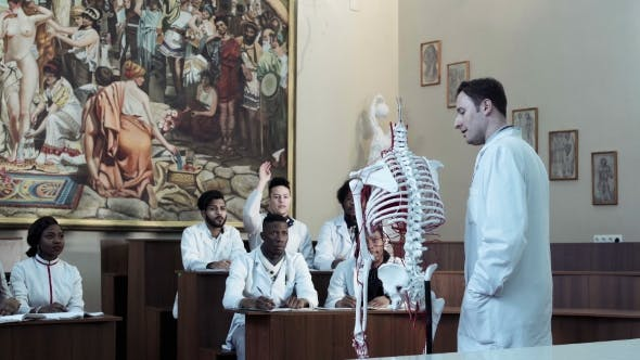 Group Of Medical Students At An Anatomy Lecture By Framestock On