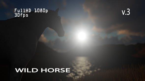 Thumbnail for Wild Horse 3