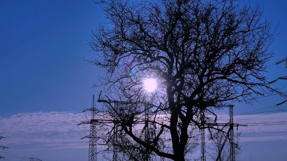 Thumbnail for Sunrise on a Winter Morning