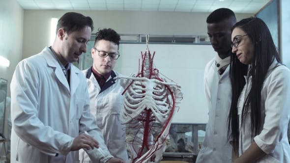 Thumbnail for Group of Medical Students at an Anatomy Lecture
