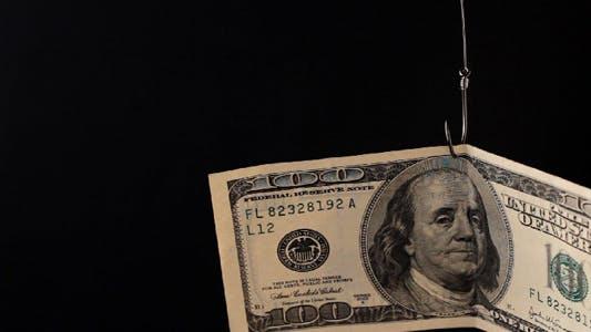 Dollars On Fishing Hook