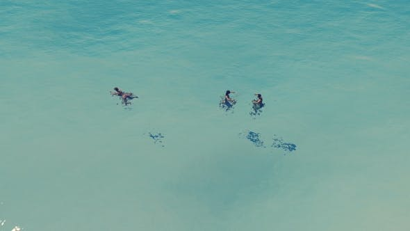 Thumbnail for People in the Sea